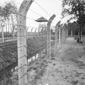 beton direkli dikenli tel çit