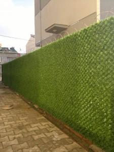 duvar çim çit